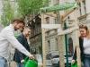 Városfásítási programot indít a padthai wokbar